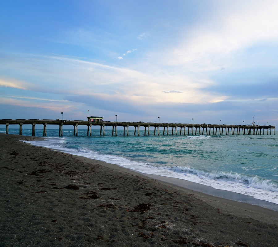 attractions in venice, florida